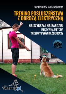 tresura psa z wykorzystaniem obroży elektronicznej